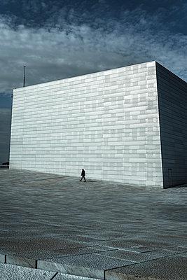 Opera House - p1170m2020127 by Bjanka Kadic