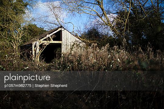 Forgotten - p1057m982775 by Stephen Shepherd