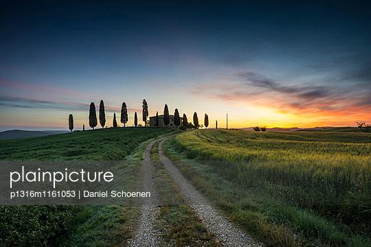 Landschaft bei Pienza, Val d`Orcia, Provinz Siena, Toskana, Italien, UNESCO Welterbe - p1316m1161053 von Daniel Schoenen