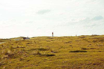 Heidelandschaft mit Leuchtturm - p432m1189774 von mia takahara