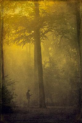 Man during fog in forest - p300m1113529f by Dirk Wüstenhagen