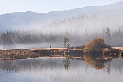 Early morning mist over Tuolumne Meadows, Yosemite National Park, UNESCO World Heritage Site, California, United States of America, North America - p871m1082175 by Adam Burton