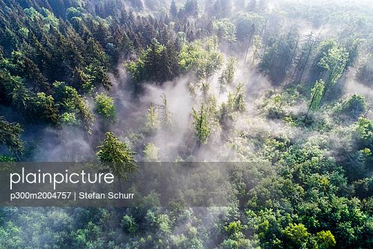 Germany, Baden-Wuerttemberg, Swabian Alb, Aerial view of Schurwald, morning fog - p300m2004757 von Stefan Schurr