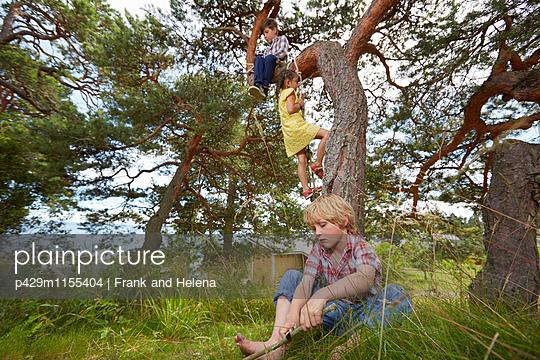 p429m1155404 von Frank and Helena