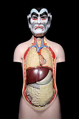 Anatomie des Dracula II - p237m886631 von Thordis Rüggeberg