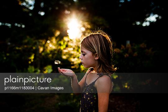 p1166m1183004 von Cavan Images