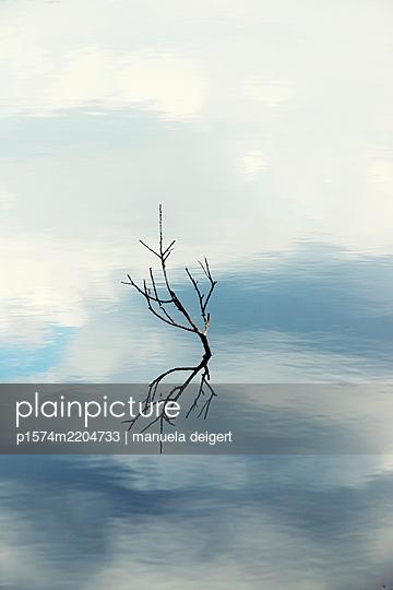 p1574m2204733 by manuela deigert
