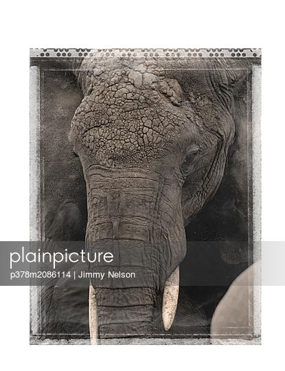 tanzania - p378m2086114 by Jimmy Nelson