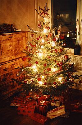 Christmas tree - p1418m1571572 by Jan Håkan Dahlström
