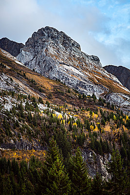 Mountain range and mountain forest, French Alps - p1007m2216449 by Tilby Vattard