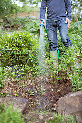 Sweden, Sodermanland, Nacka, Mature man watering plants with garden hose - p352m1078778f by Ester Sorri