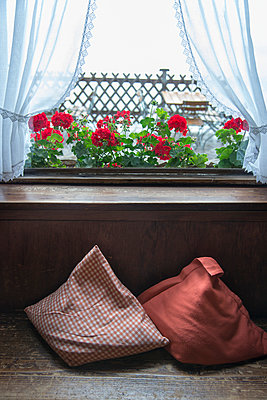 Window with curtains - p1066m970641 by Ulrike Schacht
