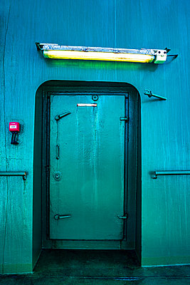 Green Door - p1082m2116670 by Daniel Allan