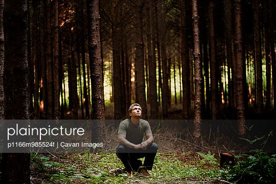 p1166m985524f von Cavan Images