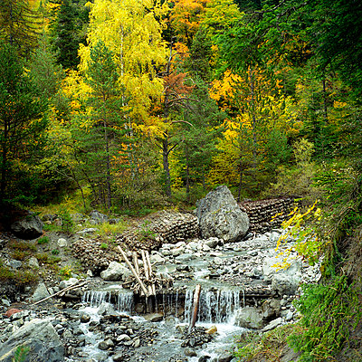 Mountain stream - p1160m951348 by Emilie Reynaud