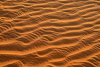 Algeria, Tassili n Ajjer, Sahara, sand ripples on a desert dune - p300m926418f by Egmont Strigl
