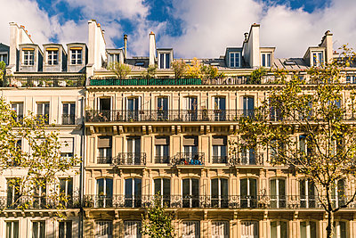 House facades Houses in the typical neoclassical architectural style of Paris center - p1332m1502786 by Tamboly