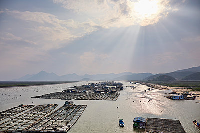 Floating village with aquaculture to cultivate seaweed and kelp, Fujian, China, Asia - p871m2023370 by Rudi Sebastian