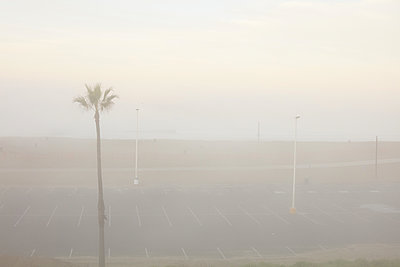 Foggy morning at the beach - p579m2043847 by Yabo
