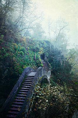 Teufelsbrücke in Inzigkofen - p470m966301 von Ingrid Michel