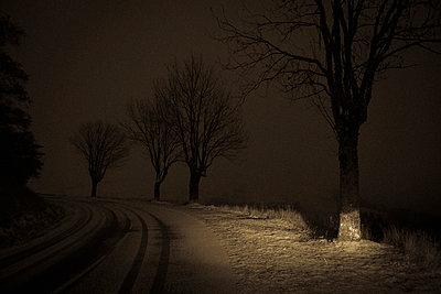 Verschneite Straße - p829m949335 von Régis Domergue
