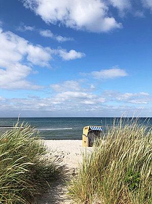 Beach chair seen through dunes - p237m2288004 by Thordis Rüggeberg