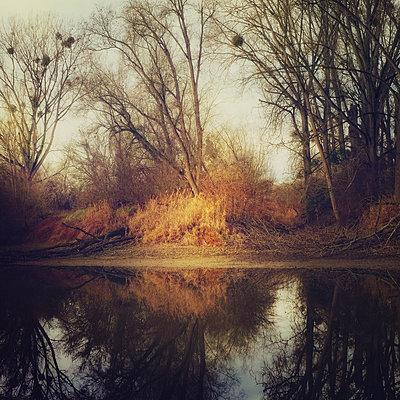Across The Pond - p1633m2208902 by Bernd Webler