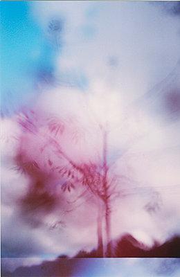 Herbstimpression - p9790495 von Clasen