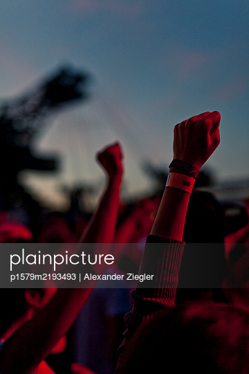 Germany, Stretched fists at the splash! festival - p1579m2193493 by Alexander Ziegler