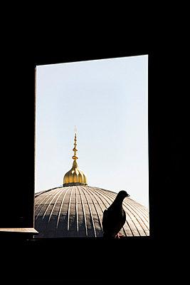 Friedlicher Islam - p4320181 von mia takahara