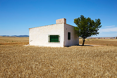 Aragon - p1075m916098 by jocl