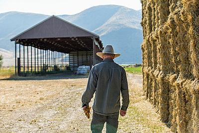 Caucasian farmer walking near stacks of hay - p555m1303730 by Steve Smith