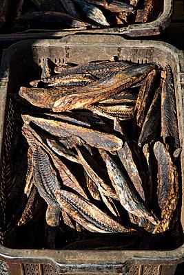 Fisch - p958m1562019 von KL23