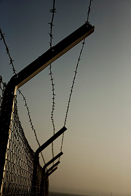 Barbed wire - p2480370 by BY