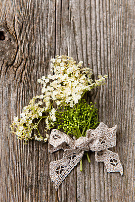 Elderflowers - p533m908643 by Böhm Monika