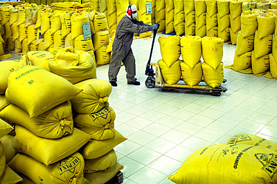Quinoa Factory, Bags Of Quinoa For Export, El Alto, Bolivia - p651m860436 by John Coletti photography