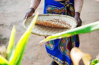 African woman winnowing grain - p1167m2273427 by Maria Schiffer