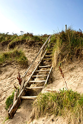 Northumberland, England; Steps leading up a sand dune - p4429421f by Design Pics