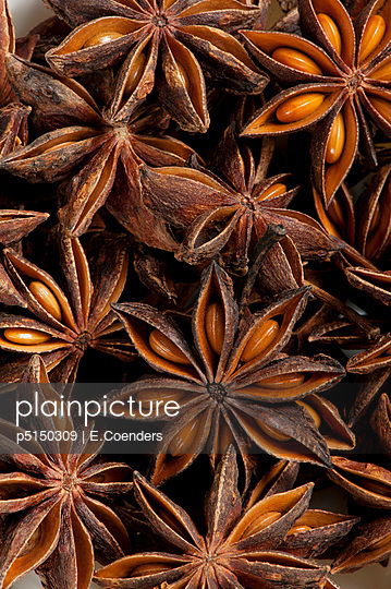 Star anise - p5150309 by E.Coenders
