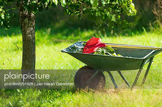 Wheelbarrow under plum tree - p1418m2291628 by Jan Håkan Dahlström