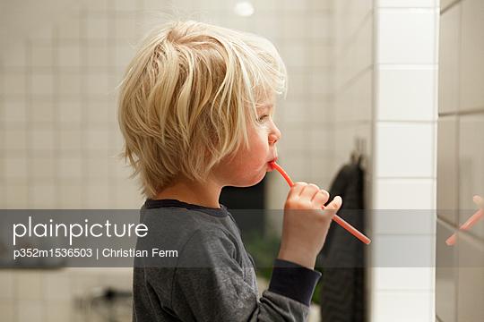 p352m1536503 von Christian Ferm
