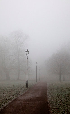 Lamppost and Path in Foggy Park - p1248m1216920 by miguel sobreira