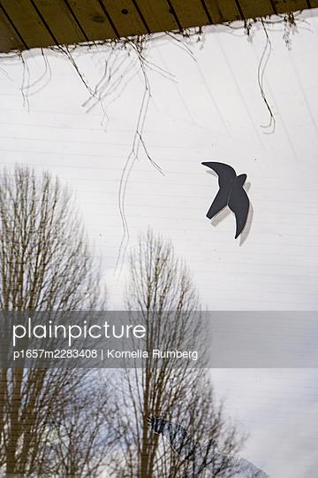 Fly away - p1657m2283408 by Kornelia Rumberg