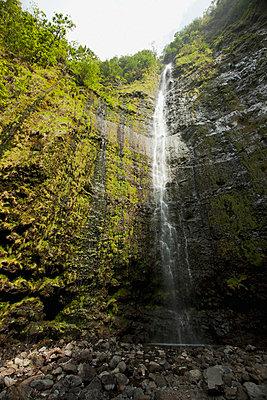 Hawaii, Maui, Hana, Waimoku Falls surrounded by lush greenery and rocks. - p442m860364 by Jenna Szerlag