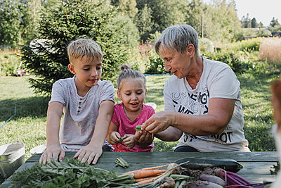 Senior woman with grandson and granddaughter enjoying harvested vegetables in the garden - p300m2029561 by Katharina Mikhrin