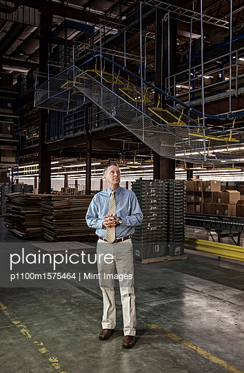 Portrait of a male Caucasian executive in a dress shirt and tie  next to a motorized conveyor system in a large distribution warehouse. - p1100m1575464 by Mint Images