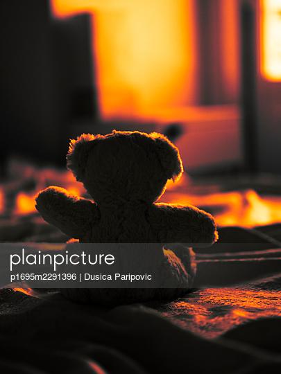 Teddy bear - p1695m2291396 by Dusica Paripovic