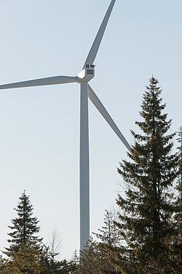Wind turbine in woodland area - p1079m1042380 by Ulrich Mertens
