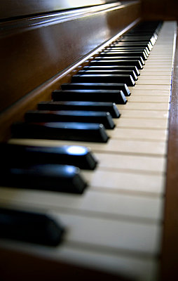 Piano keys - p3432697 by Peter Dennen