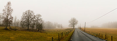 Scandinavian Peninsula, Sweden, Skåne, View of empty country road through landscape - p5755512f by Peter Rutherhagen
